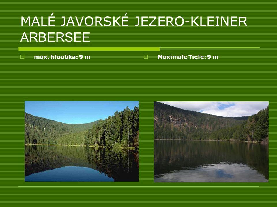MALÉ JAVORSKÉ JEZERO-KLEINE R ARBERSEE max. hloubka: 9 m Maximale Tiefe: 9 m