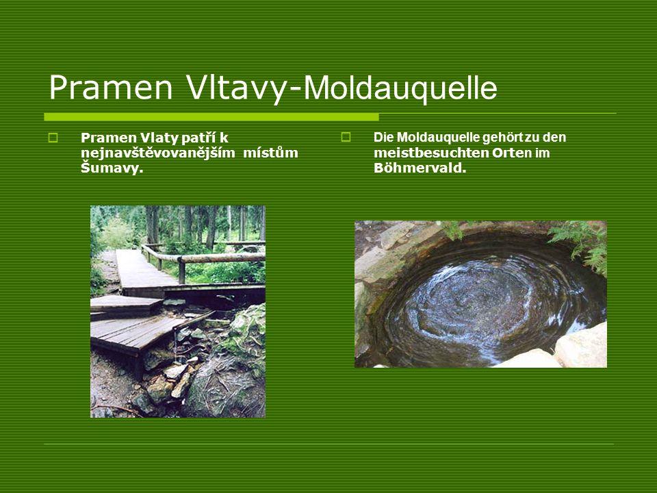 Pramen Vltavy- Moldauquelle Pramen Vlaty patří k nejnavštěvovanějším místům Šumavy. Die Moldauquelle gehört zu den meistbesuchten Orte n im Böhmervald