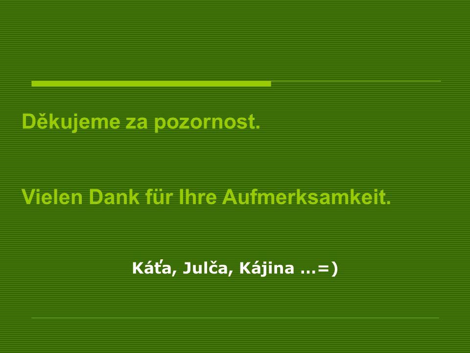 Káťa, Julča, Kájina …=) Děkujeme za pozornost. Vielen Dank für Ihre Aufmerksamkeit.