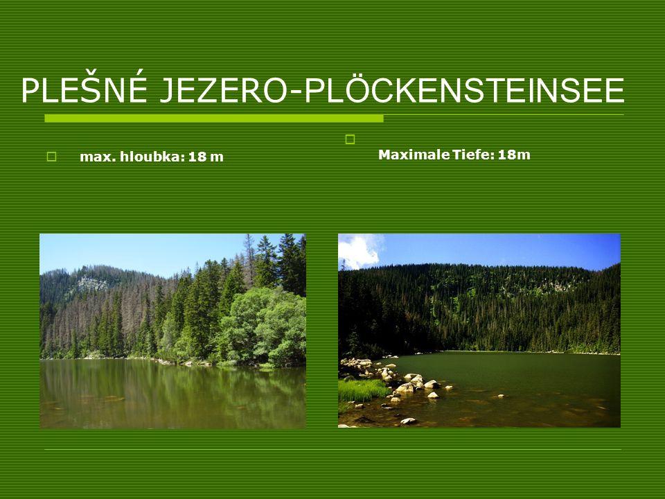 PLEŠNÉ JEZERO- PLÖCKENSTEINSEE max. hloubka: 18 m Maximale Tiefe: 18m