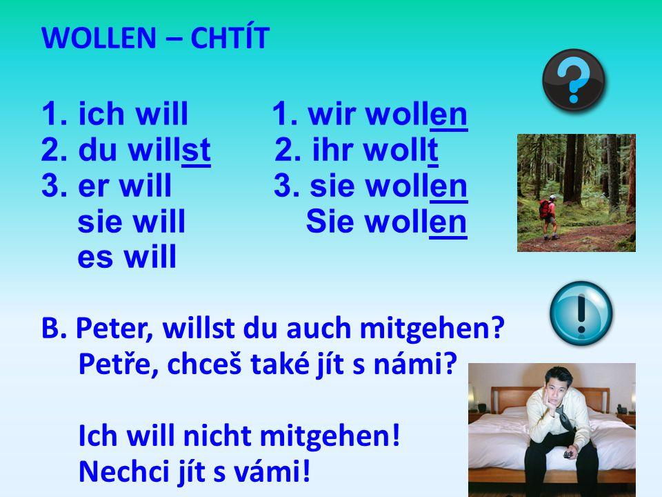 WOLLEN – CHTÍT 1.ich will 1.wir wollen 2.du willst 2.