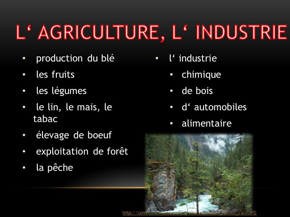 production du blé les fruits les légumes le lin, le mais, le tabac élevage de boeuf exploitation de forêt la pêche l industrie chimique de bois d auto