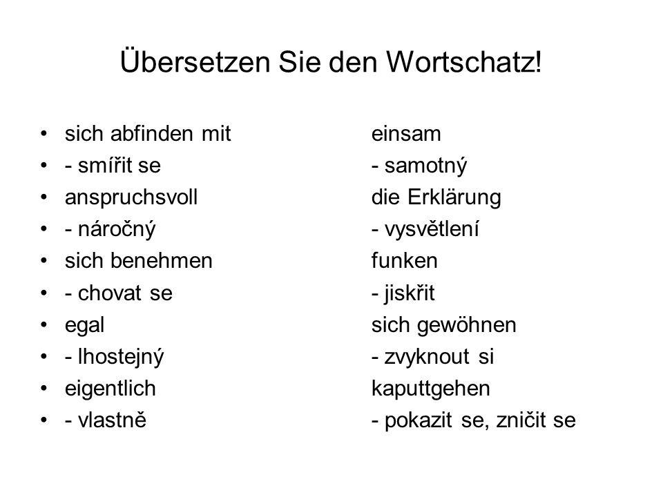 Übersetzen Sie den Wortschatz! sich abfinden miteinsam - smířit se- samotný anspruchsvoll die Erklärung - náročný- vysvětlení sich benehmenfunken - ch