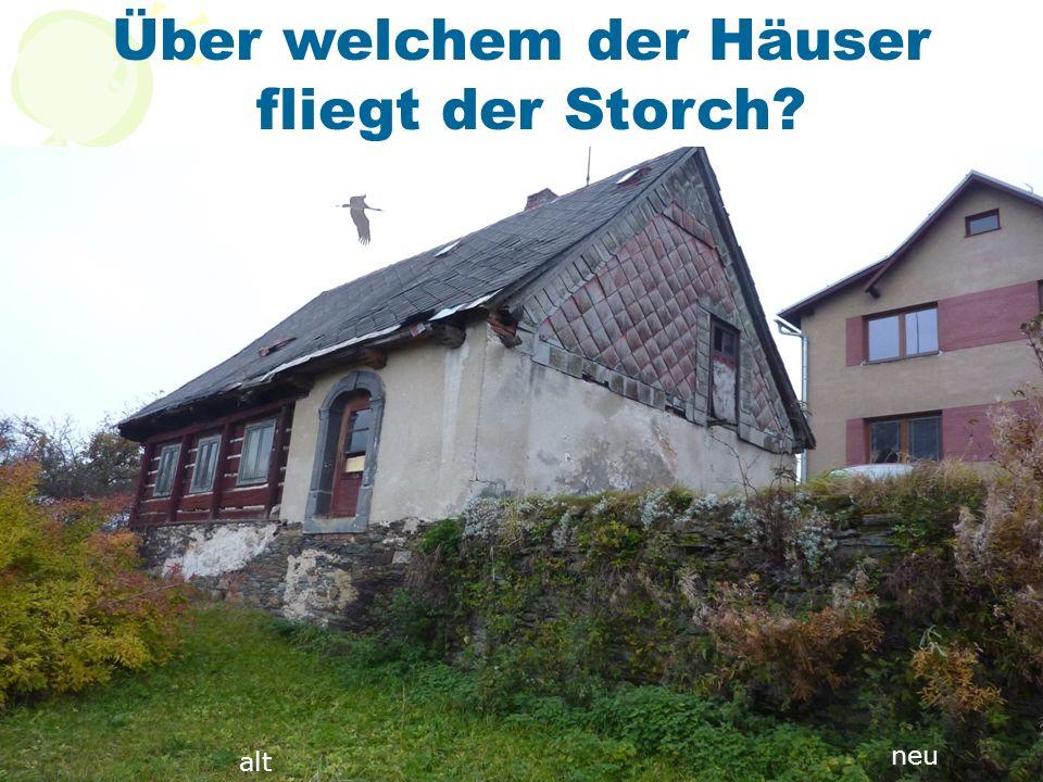 Über welchem der Häuser fliegt der Storch? alt neu