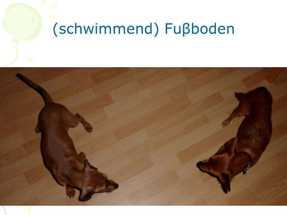 Die Hunde stehen (spielen) auf dem schwimmenden Fuβboden.