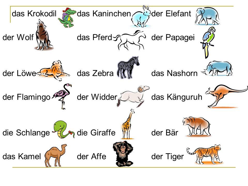 Ergänze die Namen Doplň názvy zebra das Zebra had die Schlange papoušek der Papagei velbloud das Kamel krokodýl das Krokodil slon der Elefant der Bär medvěd tygr der Tiger
