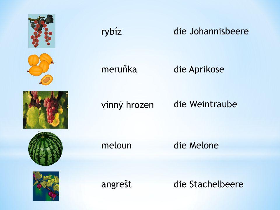 rybíz meruňka vinný hrozen meloun angrešt die Johannisbeere die Aprikose die Weintraube die Melone die Stachelbeere