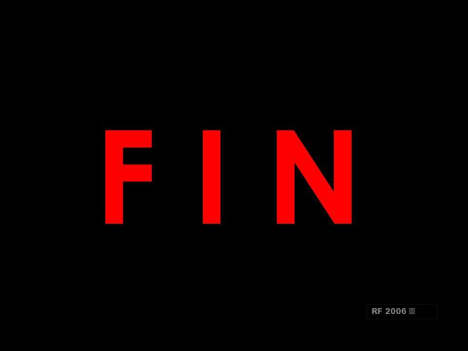 F I N RF 2006