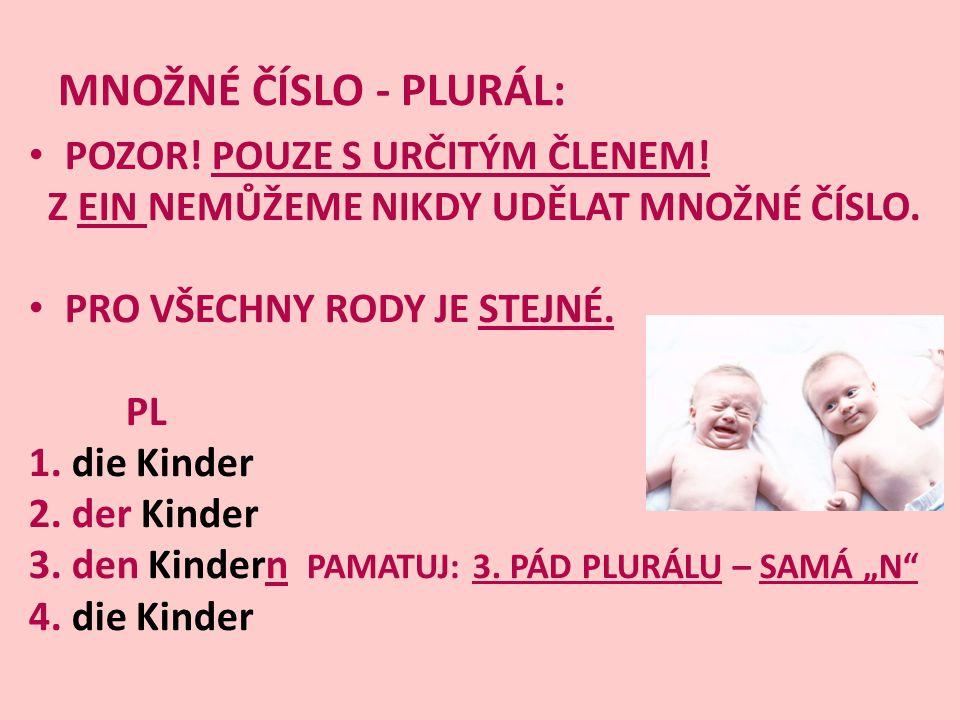 Úkol: Přelož následující věty do češtiny: 1.Wir geben der Tante die Blumen.