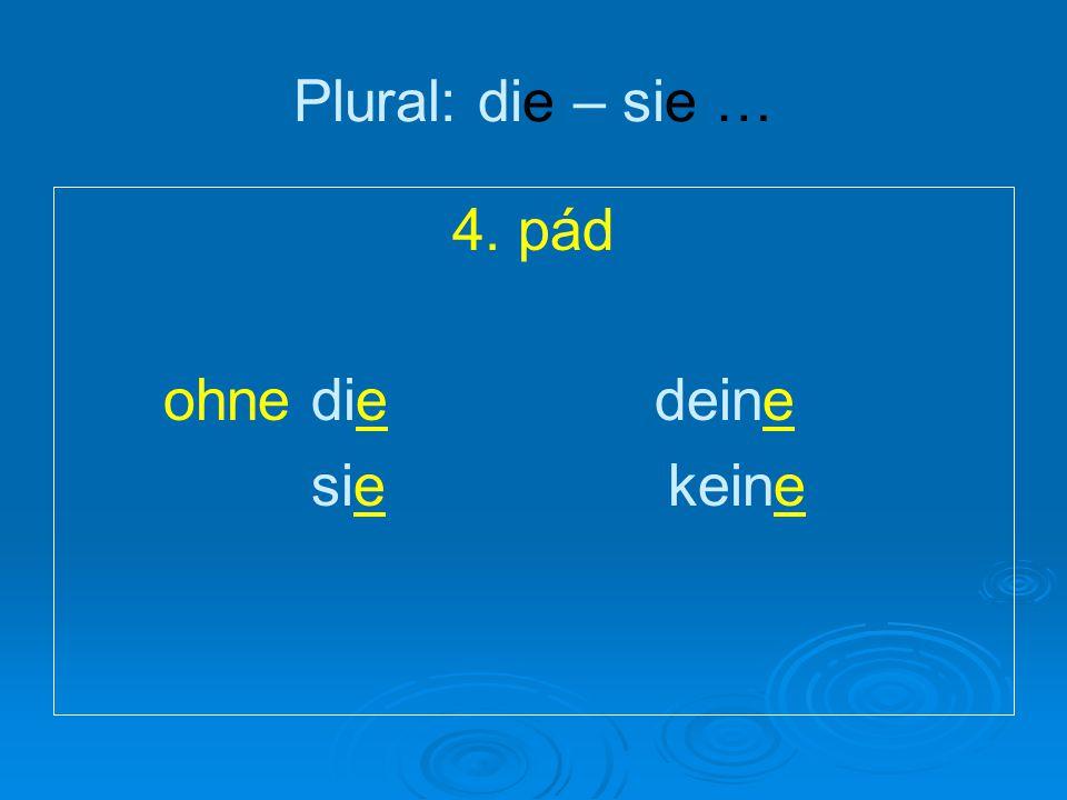 Plural: die – sie … 4. pád ohne die deine sie keine