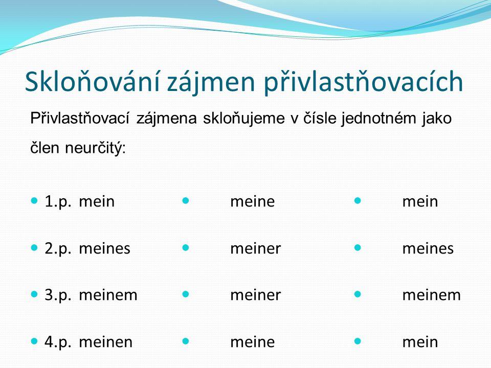 Skloňování zájmen přivlastňovacích 1.p.