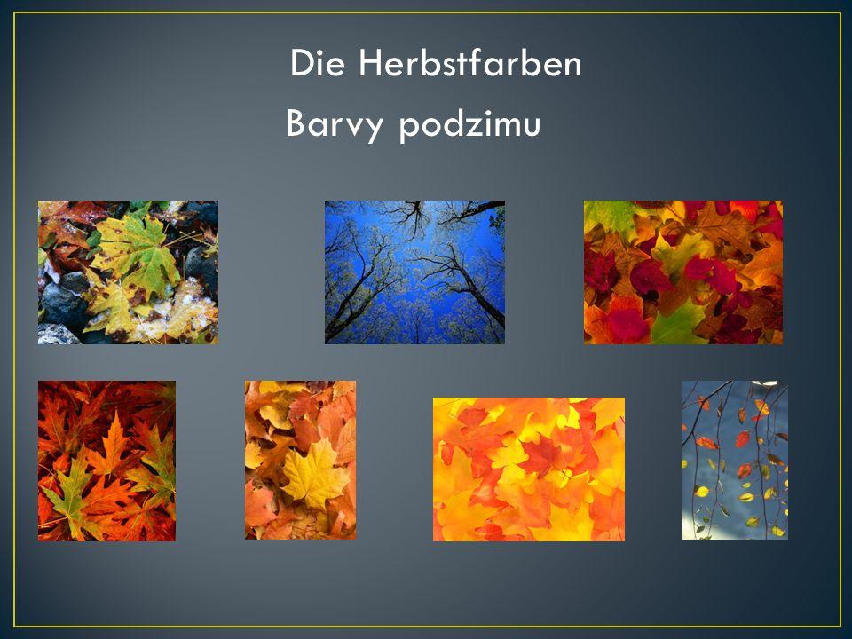 Barvy podzimu Die Herbstfarben