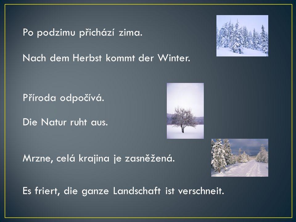 Po podzimu přichází zima. Nach dem Herbst kommt der Winter. Příroda odpočívá. Die Natur ruht aus. Mrzne, celá krajina je zasněžená. Es friert, die gan