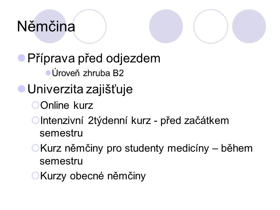 Němčina Příprava před odjezdem Úroveň zhruba B2 Univerzita zajišťuje Online kurz Intenzivní 2týdenní kurz - před začátkem semestru Kurz němčiny pro st