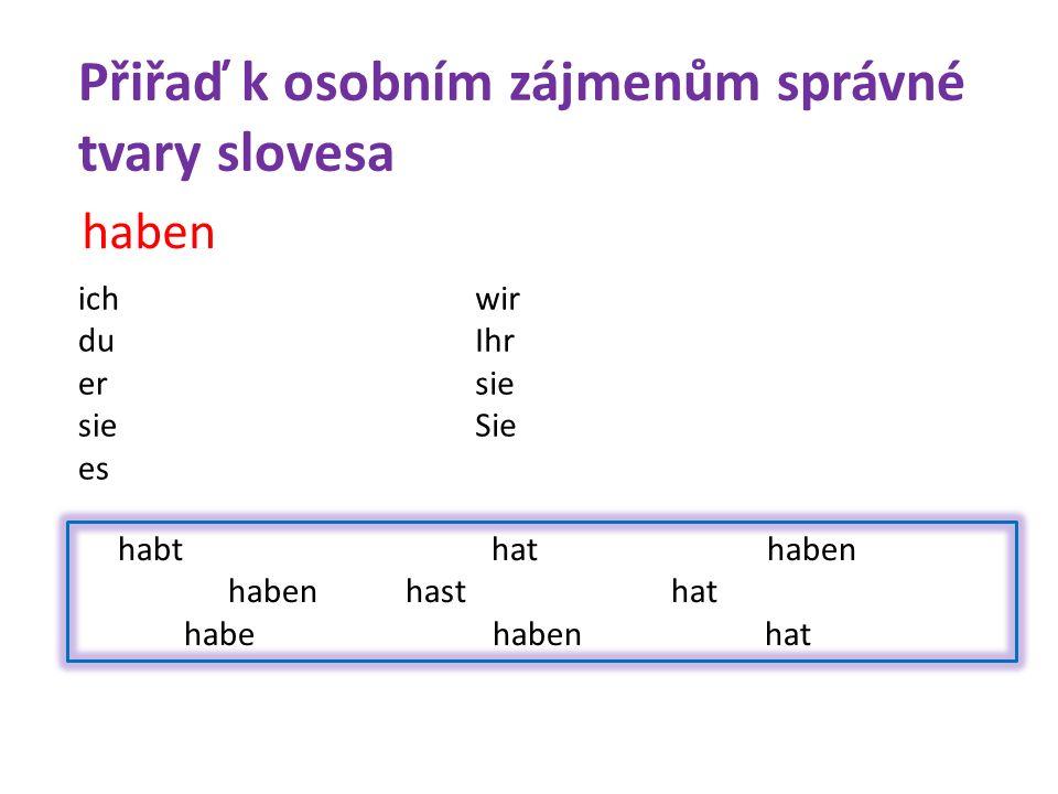 habt hat haben haben hast hat habe haben hat haben ich du er sie es wir Ihr sie Sie Přiřaď k osobním zájmenům správné tvary slovesa