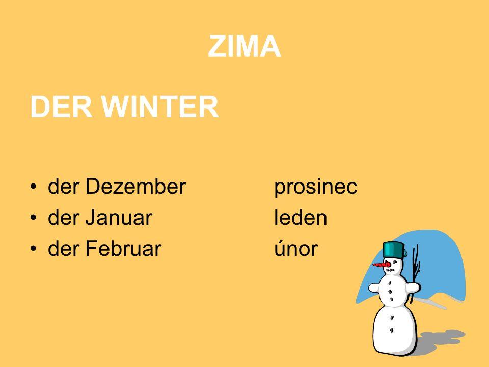 ZIMA DER WINTER der Dezemberprosinec der Januarleden der Februarúnor