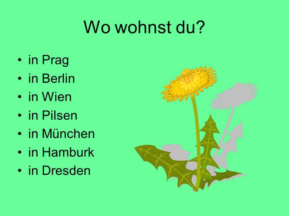 Wo wohnst du? in Prag in Berlin in Wien in Pilsen in München in Hamburk in Dresden