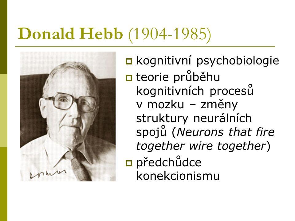 Donald Hebb (1904-1985)  kognitivní psychobiologie  teorie průběhu kognitivních procesů v mozku – změny struktury neurálních spojů (Neurons that fir