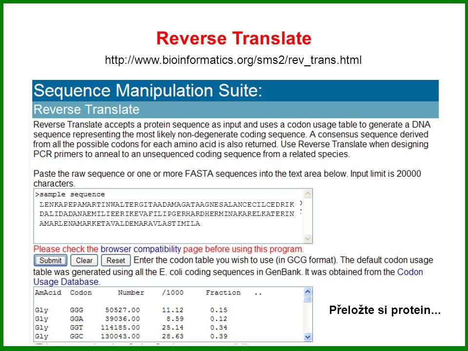 Reverse Translate http://www.bioinformatics.org/sms2/rev_trans.html LENKAPEPAMARTINWALTERGITAADAMAGATAAGNESALANCECILCEDRIK DALIDADANAEMILIEERIKEVAFILI