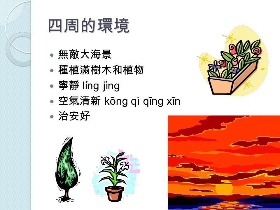 四周的環境 無敵大海景 種植滿樹木和植物 寧靜 líng jìng 空氣清新 kōng qì qīng xīn 治安好