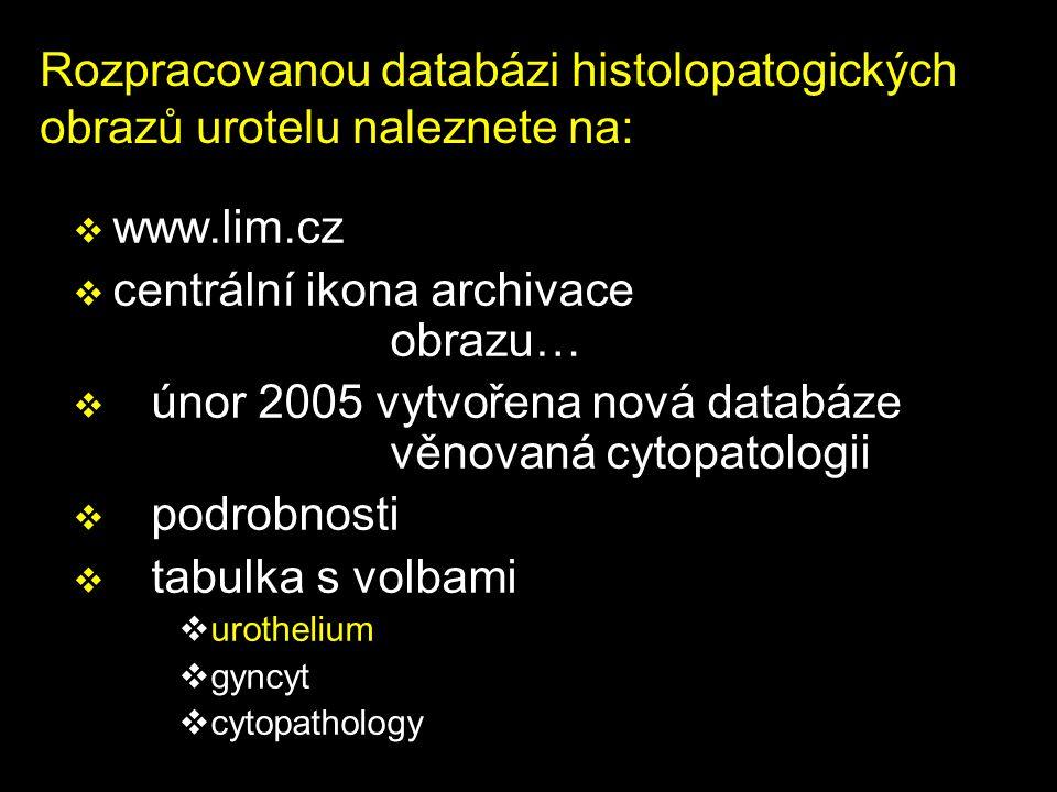 Rozpracovanou databázi histolopatogických obrazů urotelu naleznete na: v www.lim.cz v centrální ikona archivace obrazu… v únor 2005 vytvořena nová databáze věnovaná cytopatologii v podrobnosti v tabulka s volbami vurothelium vgyncyt vcytopathology