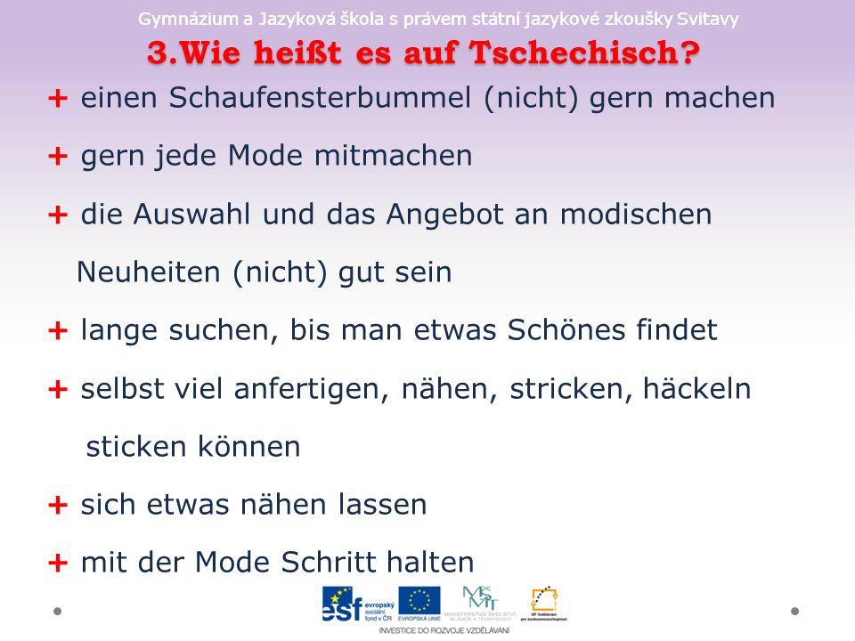 Gymnázium a Jazyková škola s právem státní jazykové zkoušky Svitavy 3.Wie heißt es auf Tschechisch? + einen Schaufensterbummel (nicht) gern machen + g