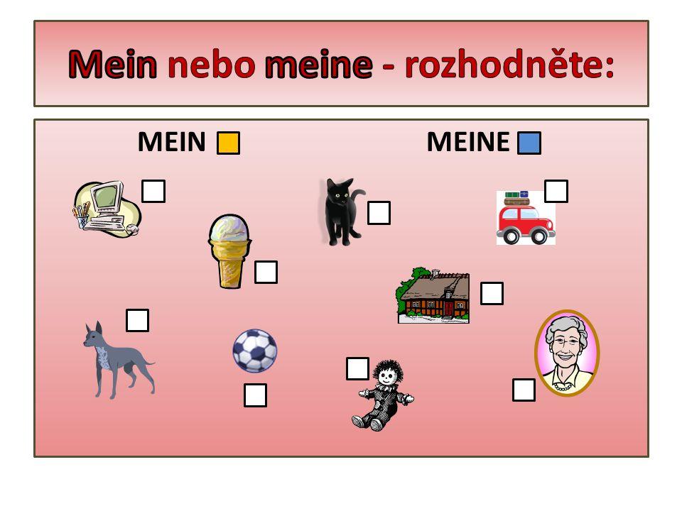 MEIN MEINE