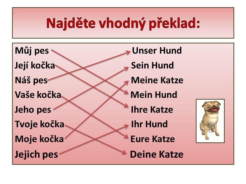 Můj pes Unser Hund Její kočka Sein Hund Náš pes Meine Katze Vaše kočka Mein Hund Jeho pes Ihre Katze Tvoje kočka Ihr Hund Moje kočka Eure Katze Jejich pes Deine Katze