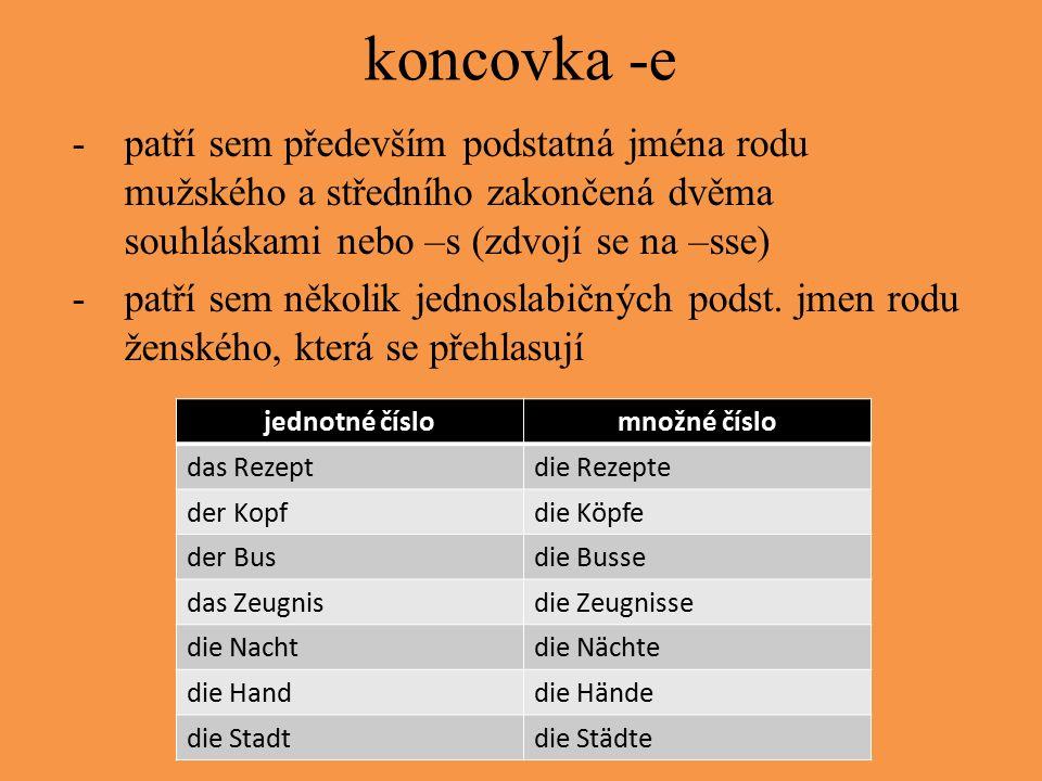 koncovka -e -patří sem především podstatná jména rodu mužského a středního zakončená dvěma souhláskami nebo –s (zdvojí se na –sse) -patří sem několik jednoslabičných podst.