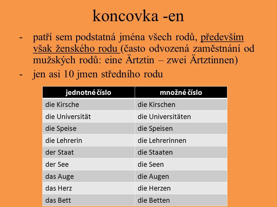 koncovka -en -patří sem podstatná jména všech rodů, především však ženského rodu (často odvozená zaměstnání od mužských rodů: eine Ärtztin – zwei Ärtz