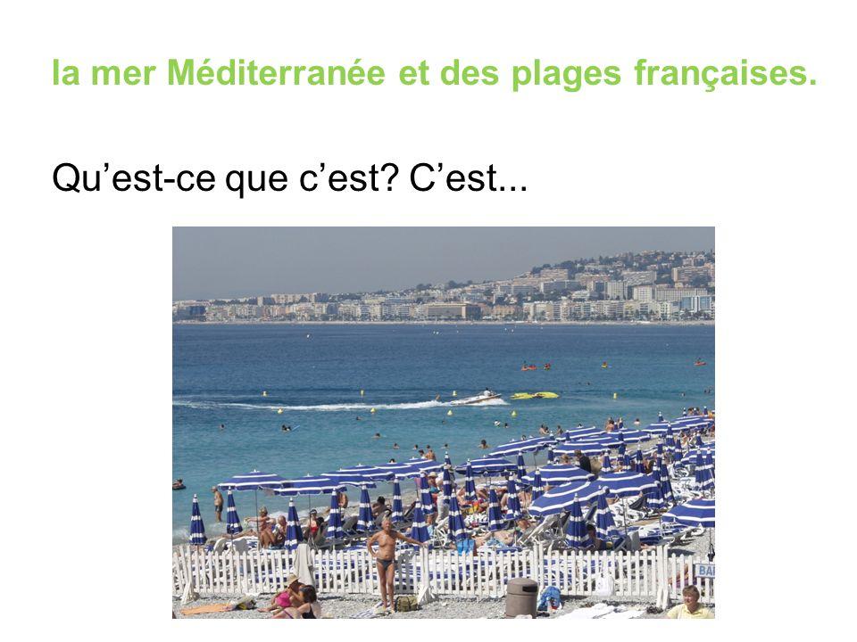 la mer Méditerranée et des plages françaises. Qu'est-ce que c'est? C'est...