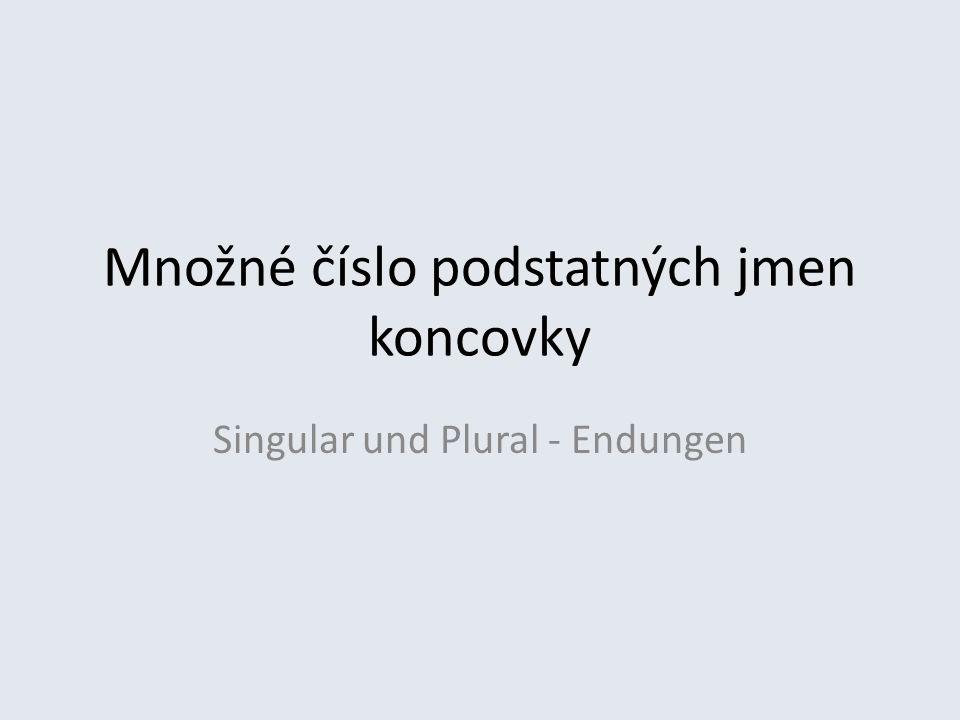 Množné číslo podstatných jmen koncovky Singular und Plural - Endungen