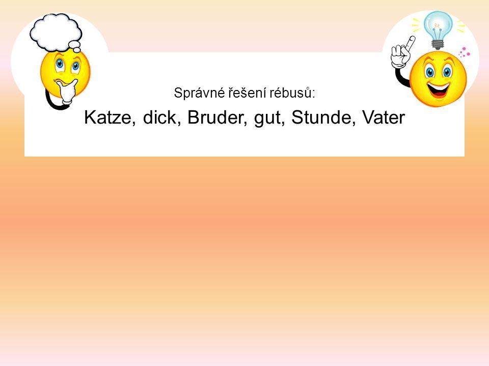 Správné řešení rébusů: Katze, dick, Bruder, gut, Stunde, Vater