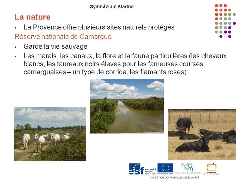 La nature La Provence offre plusieurs sites naturels protégés Réserve nationale de Camargue Garde la vie sauvage Les marais, les canaux, la flore et la faune particulières (les chevaux blancs, les taureaux noirs élevés pour les fameuses courses camarguaises – un type de corrida, les flamants roses) Gymnázium Kladno