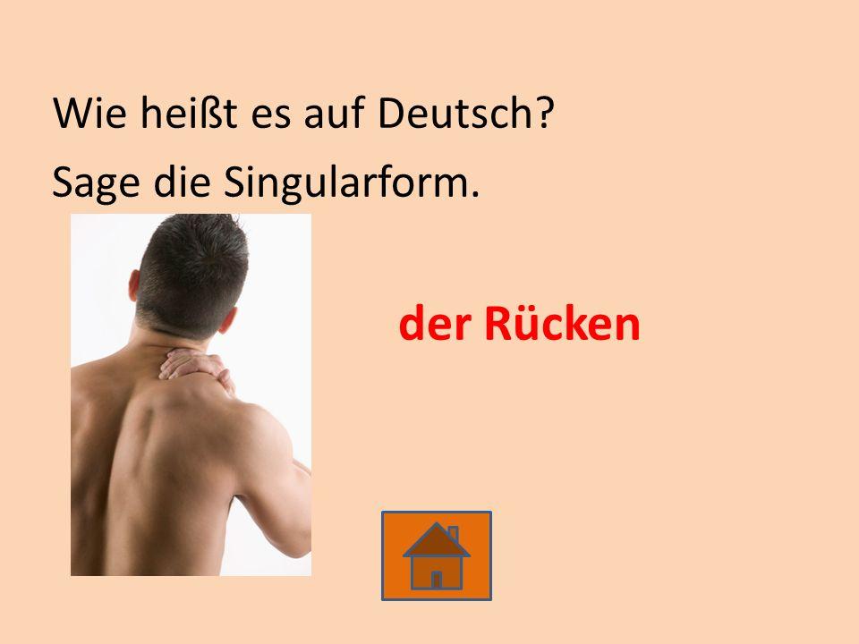 Wie heißt es auf Deutsch? Sage die Singularform. der Rücken