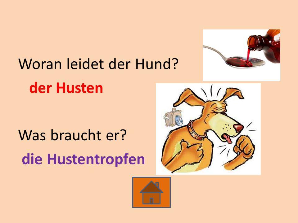Woran leidet der Hund? der Husten Was braucht er? die Hustentropfen