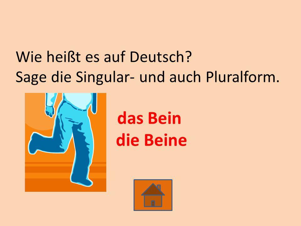 Wie heißt es auf Deutsch? Sage die Singular- und auch Pluralform. das Bein die Beine