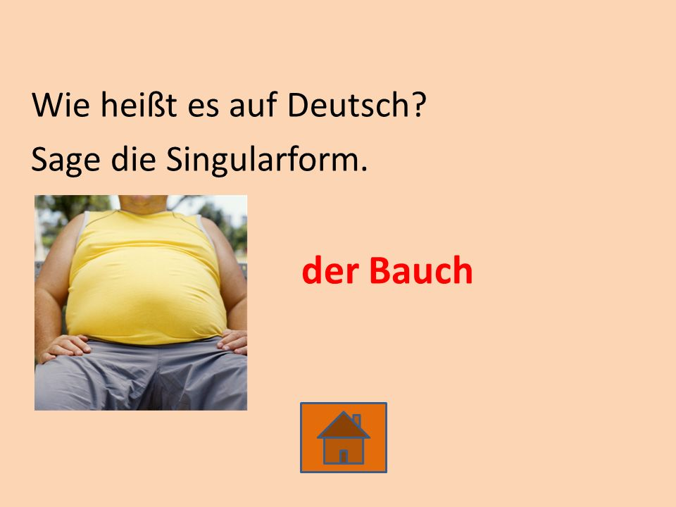Wie heißt es auf Deutsch? Sage die Singularform. der Bauch