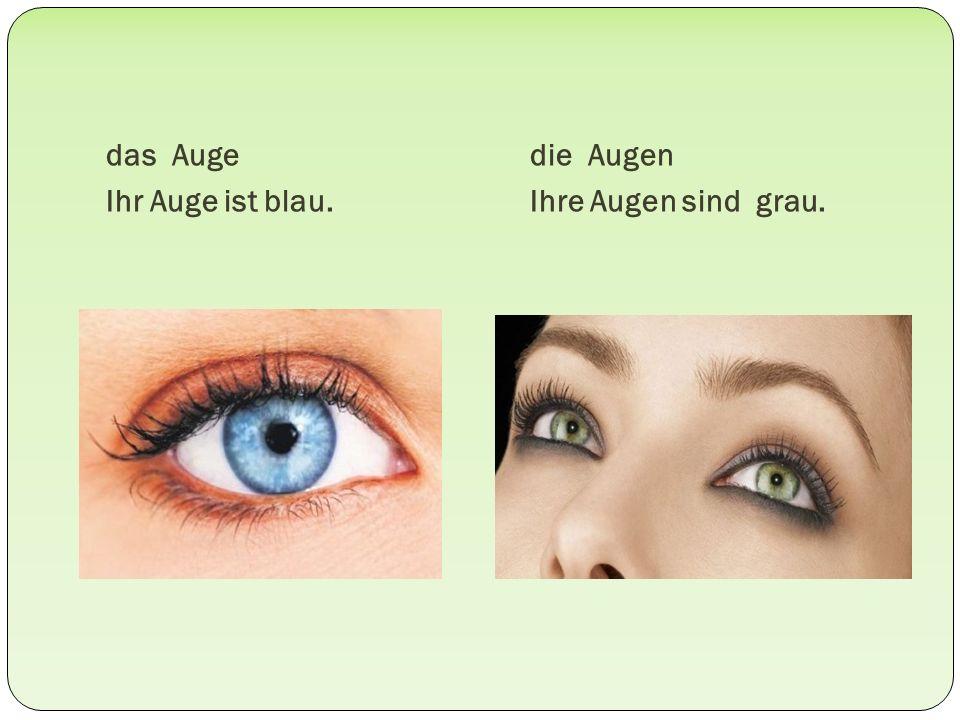das Auge Ihr Auge ist blau. die Augen Ihre Augen sind grau.