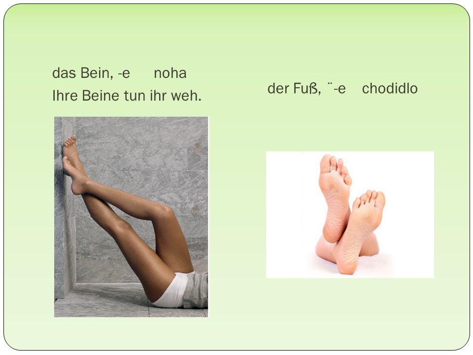 das Bein, -e noha Ihre Beine tun ihr weh. der Fuß, ¨-e chodidlo