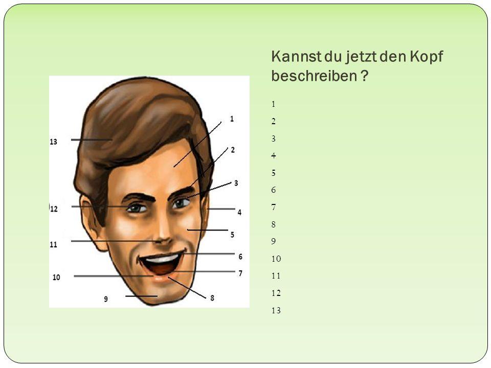 Kannst du jetzt den Kopf beschreiben ? 1 2 3 4 5 6 7 8 9 10 11 12 13