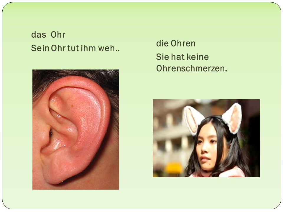 das Ohr Sein Ohr tut ihm weh.. die Ohren Sie hat keine Ohrenschmerzen.