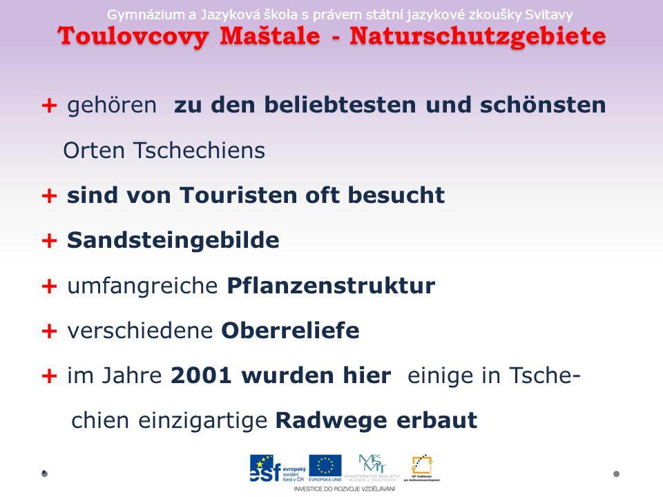 Gymnázium a Jazyková škola s právem státní jazykové zkoušky Svitavy Toulovcovy Maštale - Naturschutzgebiete + gehören zu den beliebtesten und schönsten Orten Tschechiens + sind von Touristen oft besucht + Sandsteingebilde + umfangreiche Pflanzenstruktur + verschiedene Oberreliefe + im Jahre 2001 wurden hier einige in Tsche- chien einzigartige Radwege erbaut.