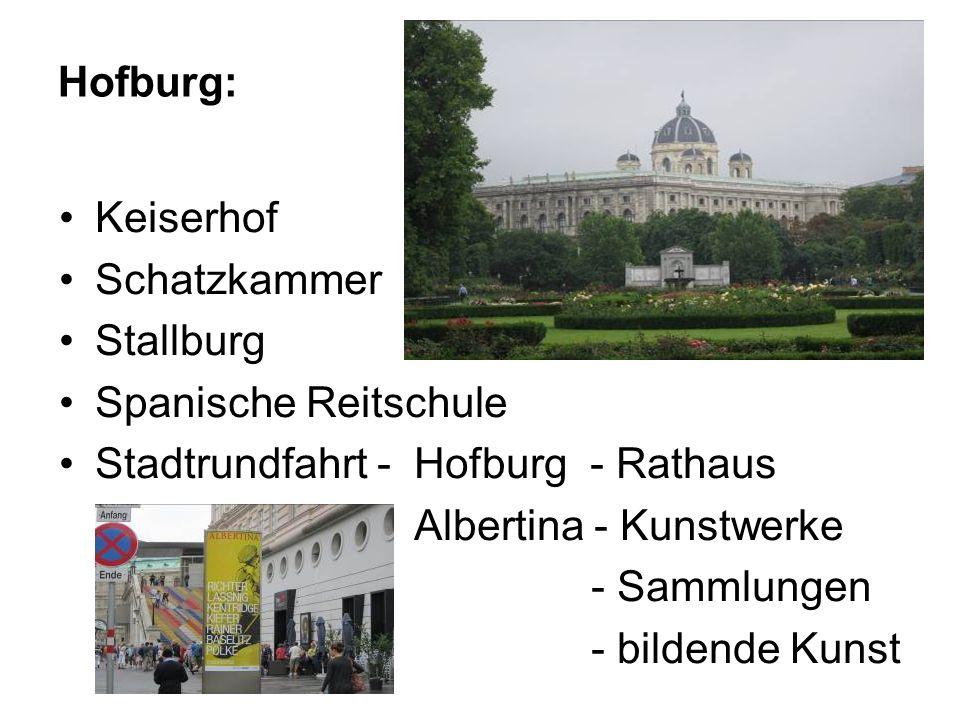Sehenswürdikeiten: Stephansdom - gotische Kirche die Fußgängerzone - Graben