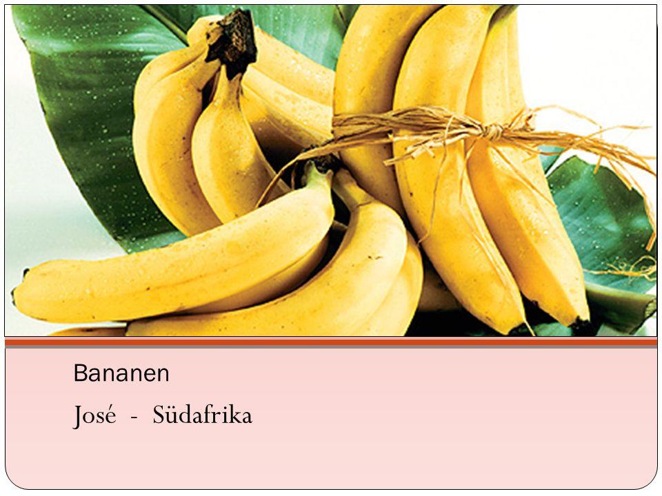 Bananen José - Südafrika