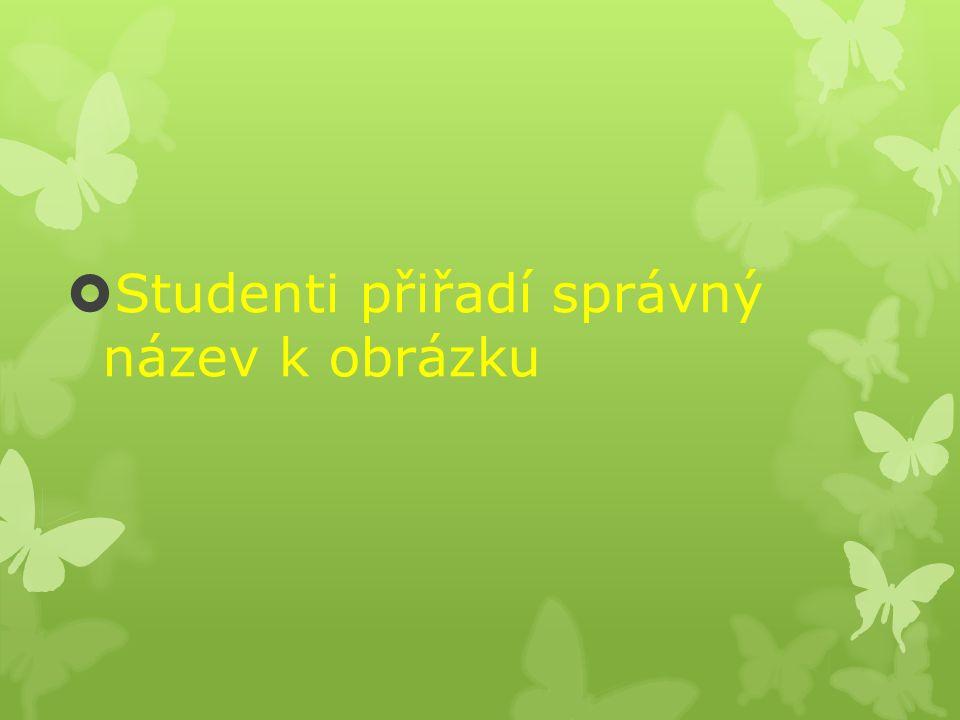  Studenti přiřadí správný název k obrázku