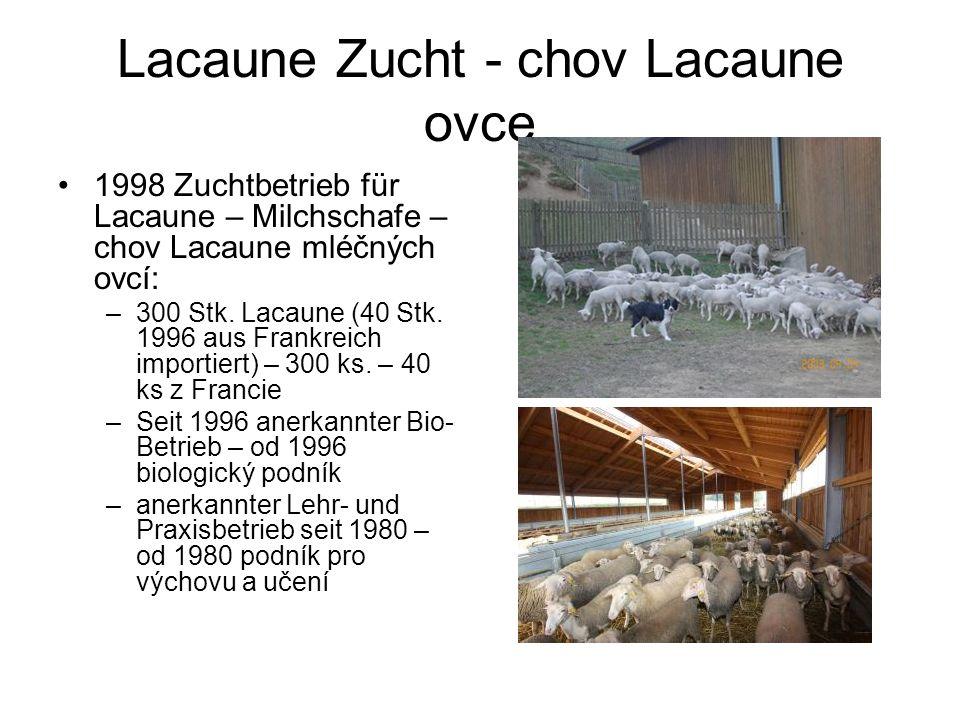 Lacaune Zucht - chov Lacaune ovce 1998 Zuchtbetrieb für Lacaune – Milchschafe – chov Lacaune mléčných ovcí: –300 Stk.