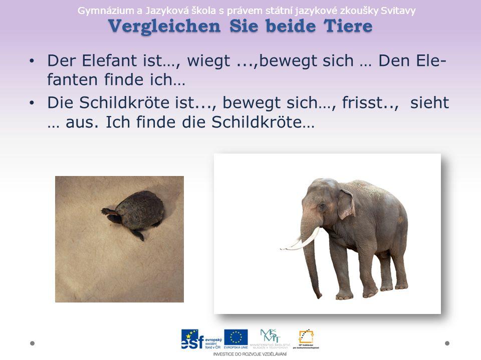 Gymnázium a Jazyková škola s právem státní jazykové zkoušky Svitavy Vergleichen Sie beide Tiere Der Elefant ist…, wiegt...,bewegt sich … Den Ele- fanten finde ich… Die Schildkröte ist..., bewegt sich…, frisst.., sieht … aus.