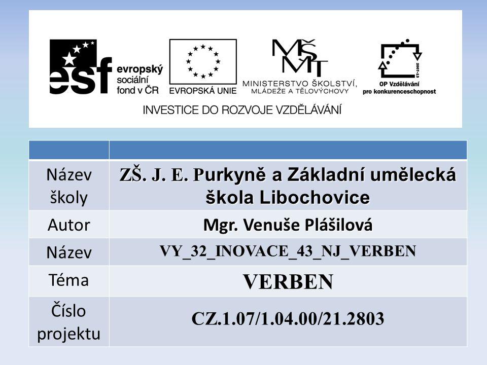 Název školy ZŠ. J. E. P urkyně a Základní umělecká škola Libochovice Autor Mgr.