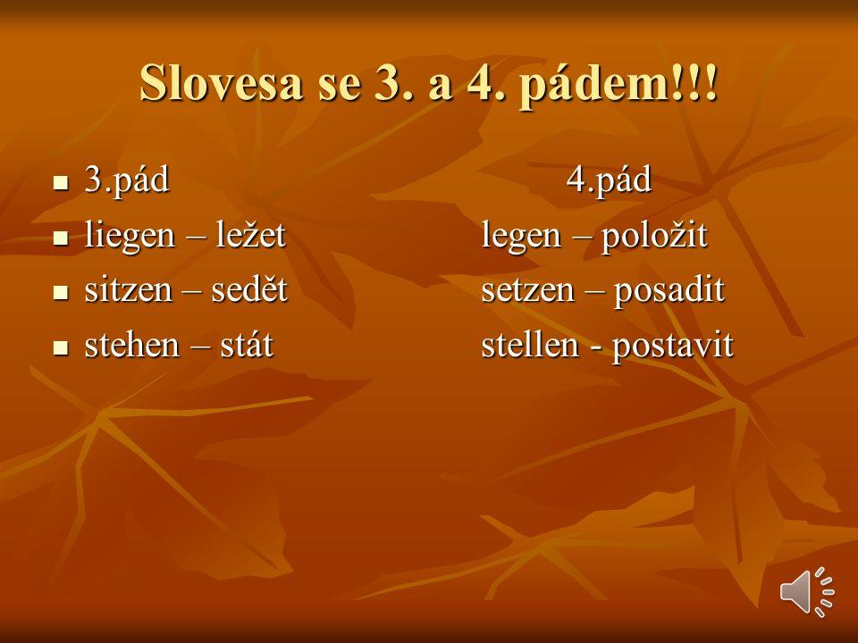 Slovesa se 3.a 4. pádem!!.